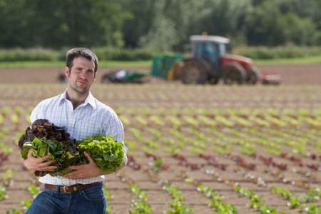 Struttura delle aziende agricole italiane