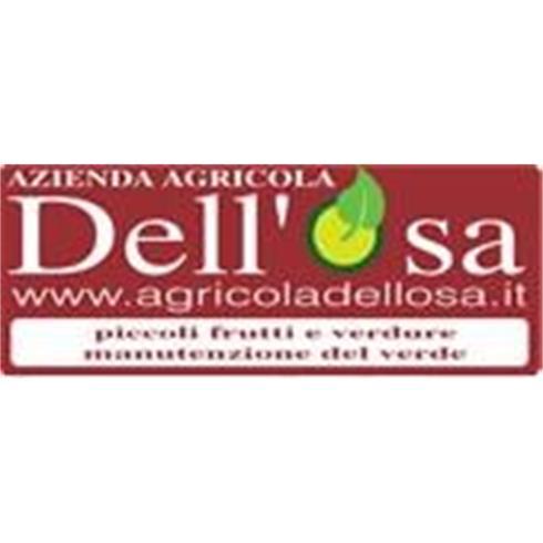 azienda agricola Dell Osa Enrico Isaac