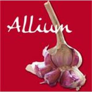 Allium Di Gianluca Delle Monache