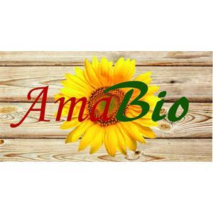 Amabio Mattioli