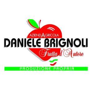 Brignoli Daniele