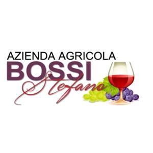 Bossi Stefano