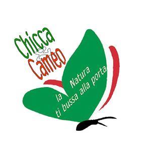 Chicca & Cameo Di Raffaele Bove