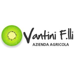 Fratelli Vantini