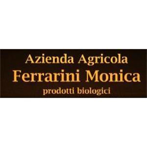 Ferrarini Monica