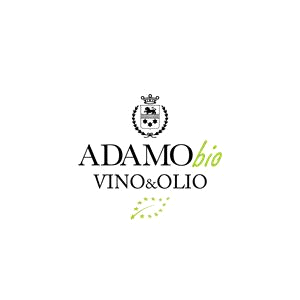 Vincenzo Adamo