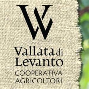 Cooperativa Agricola Vallata Di Levanto