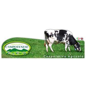 Cooperativa Agricola Campotenese