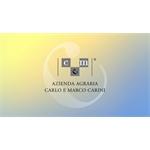 Carlo & Marco Carini Azienda Agraria