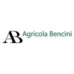 Ab Agricola Bencini