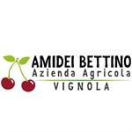 Amidei Bettino
