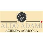 Adami Aldo E C.