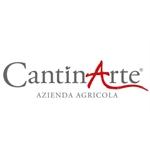 CantinArte - Di Nisio Francesca