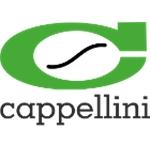 Cappellini S.N.C. Di Cappellini & C.