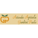 Gambini Paolo - Pesaro (Pu)