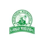 Ghigo Miranda