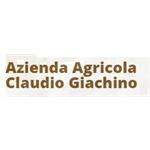 Giachino Claudio