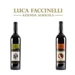 Luca Faccinelli