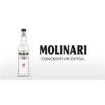 Molinari Italia S.P.A