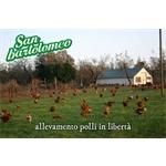 San Bartolomeo Soc.Coop.Agricola