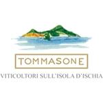 Tommasone Vini