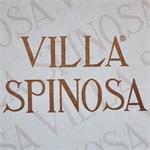 Villa Spinosa Azienda Agricola