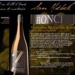 Vino-San-Michele1[1]