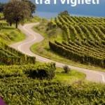 Itinerari_tra_i_vigneti
