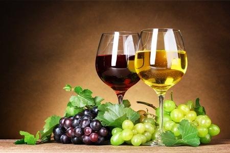 Nato il primo Osservatorio del Vino Italiano