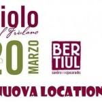 festa del vino 2016 Bertiolo