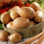 Con la patata del Fucino siamo a 282 Igp